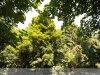 Felsőpetény - Almásy-kastély és parkja